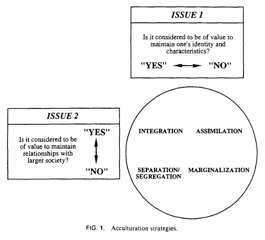 Acculturation strategies by John W. Berry (1997).
