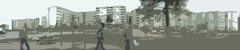 videosiluetti_cutout
